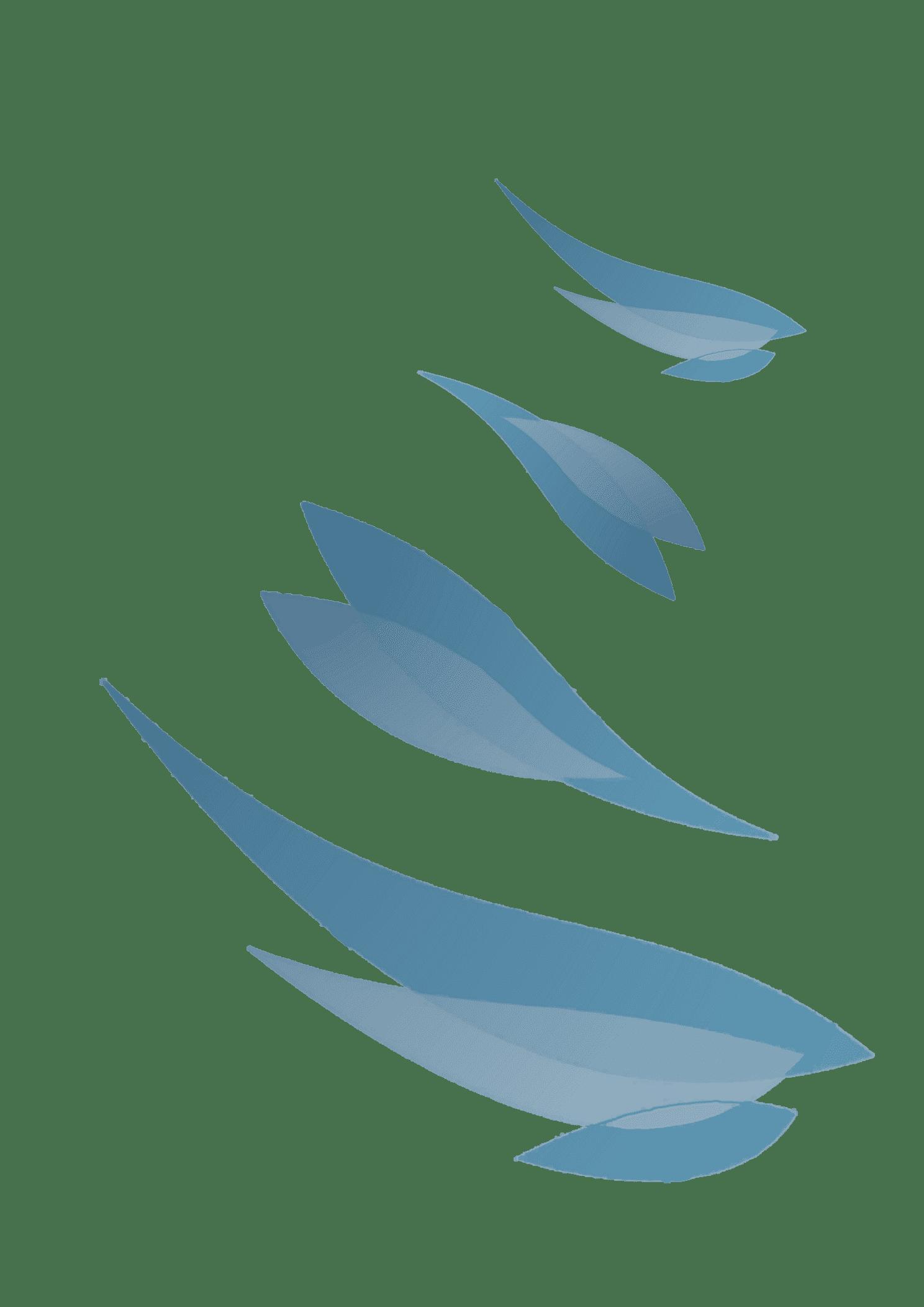 cabinet paramédical les colibris